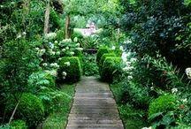Garden: outdoor / by Brico Idea
