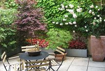 Urban Gardening / Ideas for container and small space gardening and urban outdoor spaces / by Leslie Forster