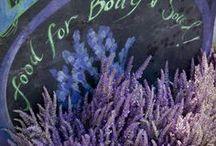 The Wonderful World of Lavender
