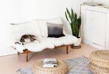 Living Room / by Hannah || Cottonwood Road Photography