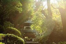 dreams of japan / by Christi Pier