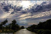 Jolie nature le long des canaux et rivières