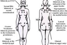 Fibromyalgia Stuff / Information, humor and quotes relating to Fibromyalgia. / by Jennifer Samuels