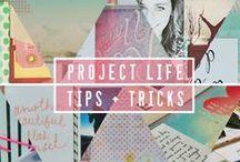 Project Life / Project Life/Pocket Scrapbooking