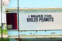 Georgia Peanuts / Supporting the peanut farmers! / by Georgia Farmer