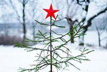 Noël ♡ hiver
