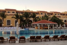 Secrets Capri Resort / All adult , all inclusive resort near Playa del Carmen, MX / by Adrienne The Travel Specialist