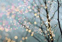 fireflies light up the sky / by Samantha Peters