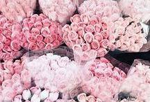 Florals / Flower inspiration, flower arrangements, bouquet, wild flowers, peonies, roses