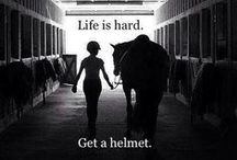 Equine Quotes / For motivation, pinspiration, and pure LOVE of your animals!
