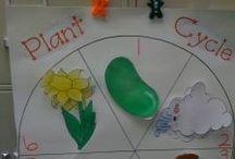 Teach Science! / by Brittney Jansen