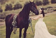 Rustic Wedding / Using a barn as your aisle and your horse as the ring barer.