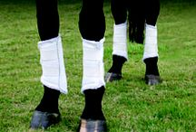 Boot it Up! / Protective Gear for your Horse