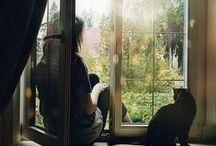 Windows... / Fenêtres en tout genre....