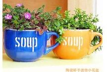 DIY Plant & Gardening Crafts / by Crafts to Make
