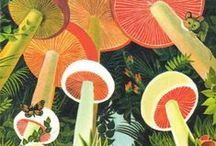 Mushrooms in art / Mushrooms and fungi portrayed in any form of art and craft.