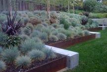 Exteriors: gardening faves