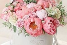 ! ~Flowers~ ! / flowers, pretty flowers, roses, floral design, flower design, floral centerpiece, peonies, daffodils, tulips, ranunculus, floral bouquet, flower bouquet, wedding bouquet