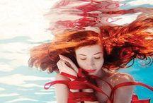 Under Water / Underwater photography