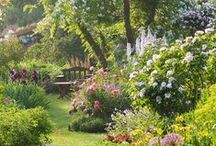 Inspiring English Gardens