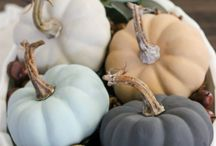 Fall / Ideas for fall decorating, pumpkins, thanksgiving, rustic, diy, crafts