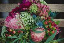 Floral inspiration / by Jessica Keay