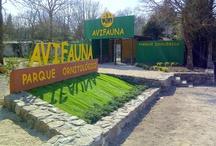 Nuestras instalaciones / Avifauna está situado en una antigua cantera. Son tres hectáreas de bosque adaptadas a mano. Un lugar ideal para difrutar de un jardín botánico al mismo tiempo que se visitan aves de los cinco continentes