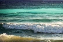 Nature's Wonders: The Sea / by Kayla Sewell