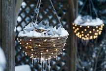 My winter wonderland / by Amy Loberg