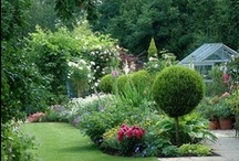 Home & Garden / Planters, Flowers and Garden Ideas