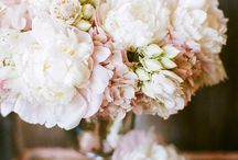 FLORAL / by Kaity Rubinic