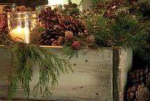"Christmas at Pincone Lodge / by Rachael Powell - ""MyssP"""