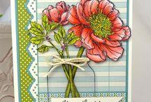 Cards 2 / by Tara Shaffer