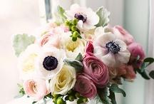 Flowers / by Nancy Nicoll