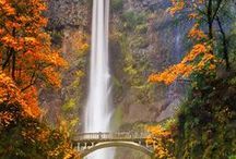 Oregon / Places and things to do in Oregon. Travel around and pick up t-shirts, bags and candles.