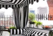 Color+ Black & White