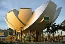 Architecture+ Museum
