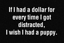 I HA! I / Just for a laugh. / by Tsirputus