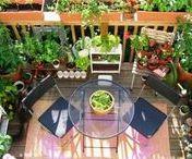 Inspiration balcon / Découvrez dans ce board toutes les idées créatives pour jardiner sur un balcon ainsi que les inspirations pour son aménagement !