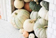 ◾ IDEAS ◽ autumn & halloween ◾ / A board for the autumn celebration ideas.