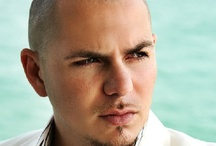PITBULL / by Nexus Radio
