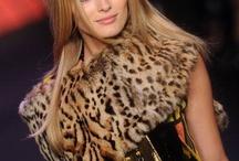 Charming Leopard