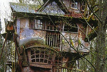 Treehouse*Hideaways.... / by Heather Church