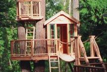 Tree house / by Stephanie Risberg