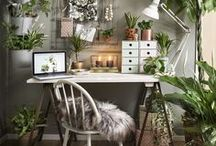 Home Office Dreams / Home office, office decor, work from home, garden office, backyard office, cute office, outdoor office, freelance, office design, desk space, office organisation, desk organisation,