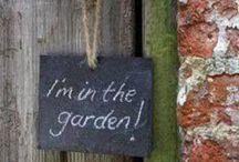 Garden / by Melinda Barnett