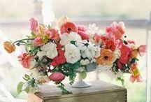 Wedding Day Blooms