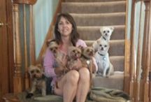 Kimmies Doggy Daycare♡♡♡♡♡ / Dogs loveeeee / by Kim Emilo