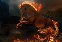 Steed of Fire / There is something about the outside of a horse that is good for the inside of a man. ~Winston Churchill