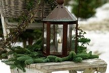 Winter / container design, wreath making, holiday display inspiration  / by Chris Hofer